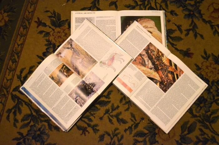 encyclopedia spread